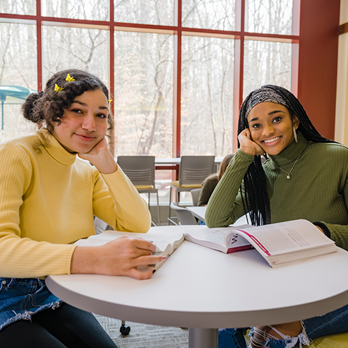 two students studying at cecil college
