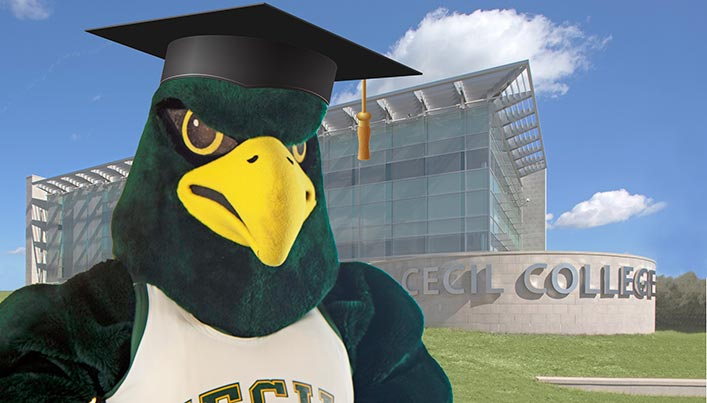 Gibson, Cecil College's official mascot, in a graduation cap.